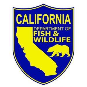 California Upland Game Bird Stamp Art Contest